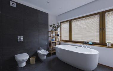 Modern dark bathroom with toilet and freestanding bathtub